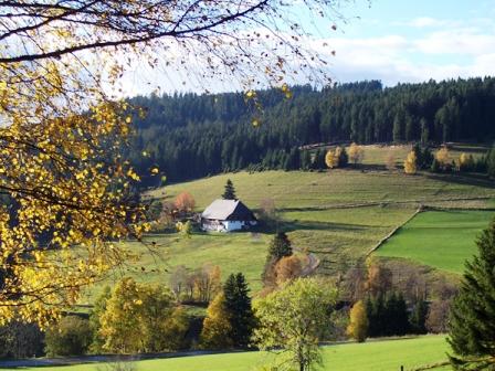 Schluchsee1